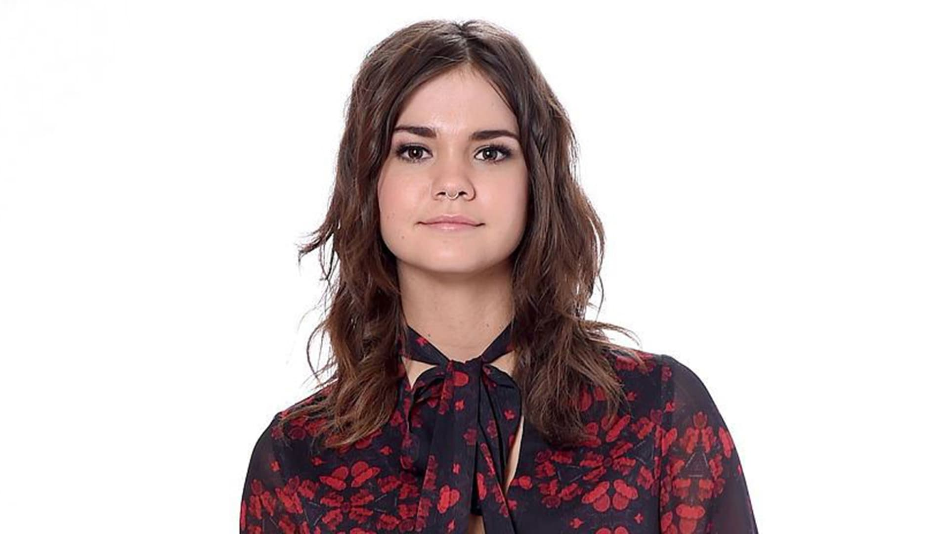 Animals In Suits Wallpaper Maia Mitchell Wallpapers Hd High Quality Resolution Download