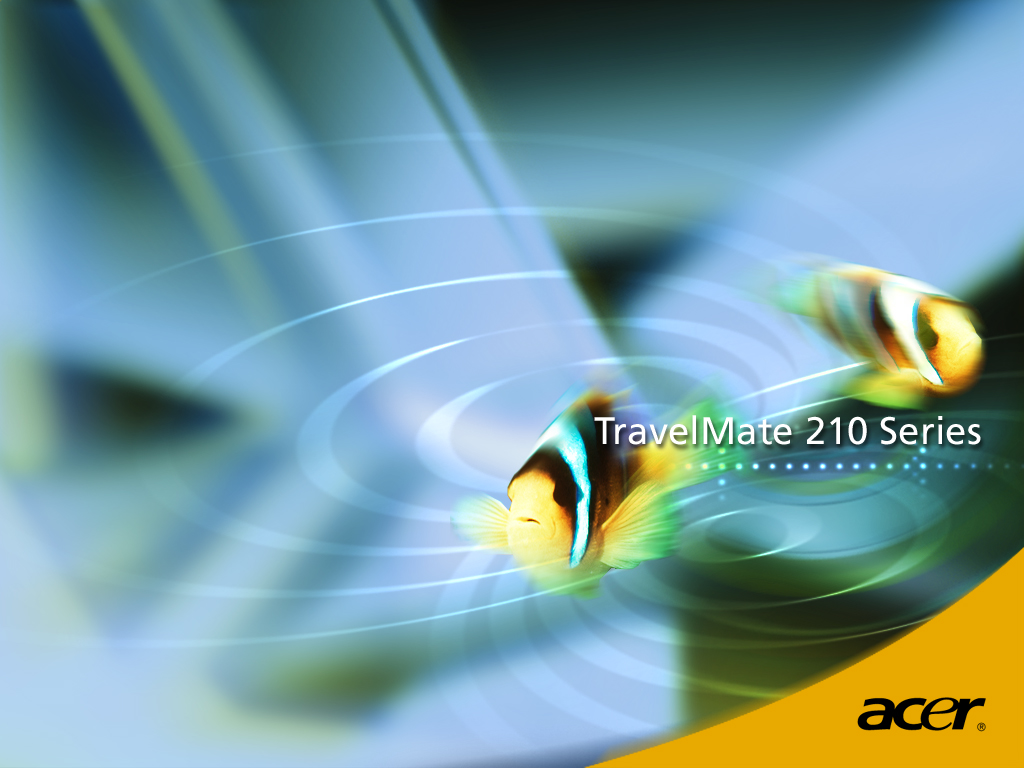 Download 3d Animated Wallpapers For Windows 8 Acer Fish Wallpapers Acer Fish Stock Photos