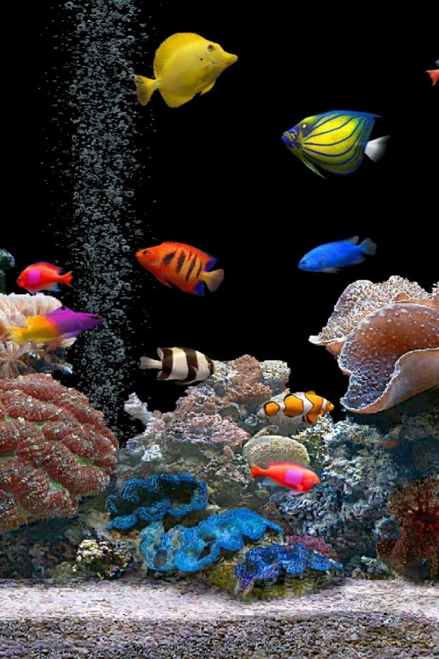 Iphone X Hd Wallpaper 640x960 Aquarium Iphone 4 Wallpaper