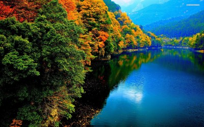 Autumn Trees & Blue River wallpapers | Autumn Trees & Blue River stock photos