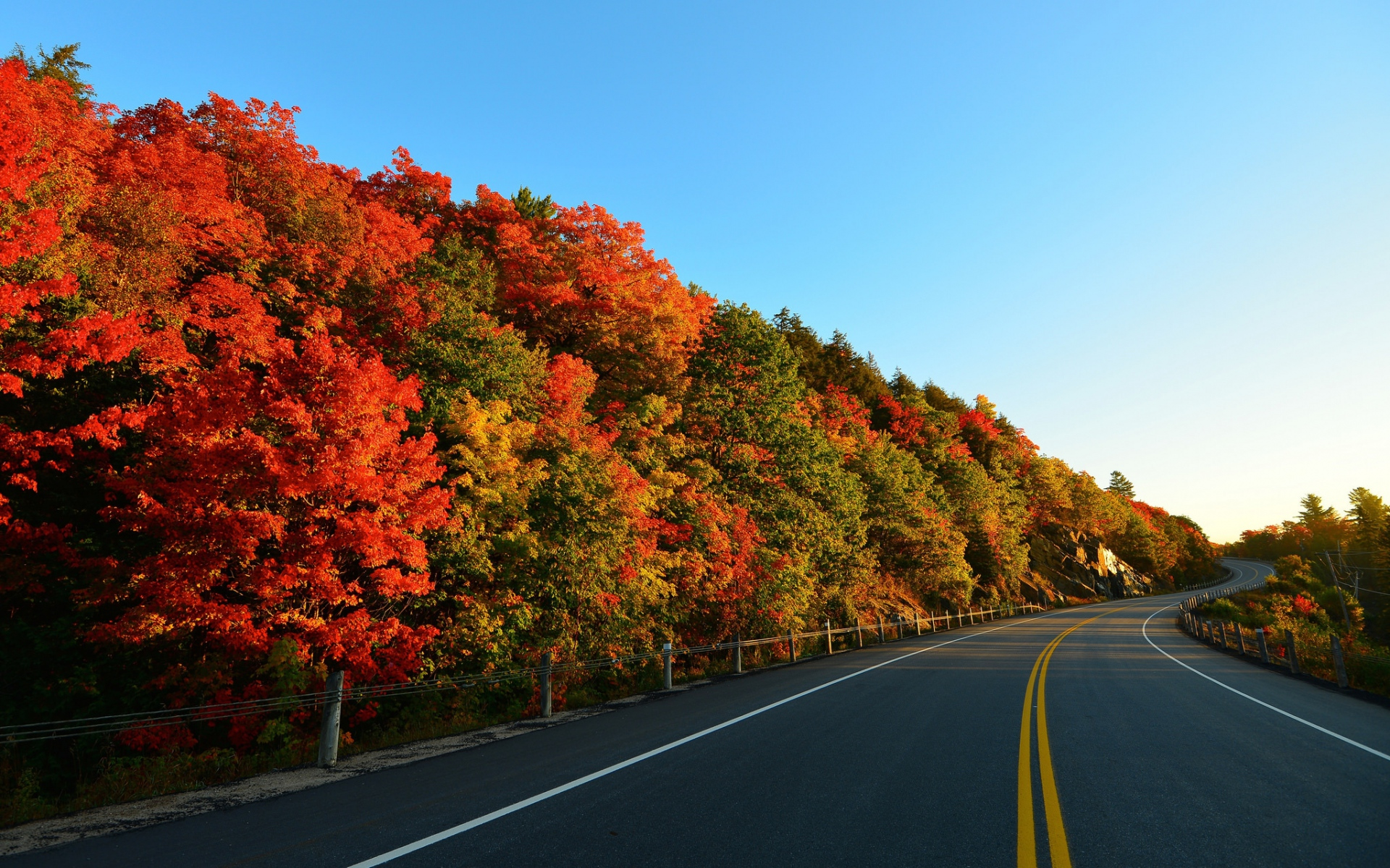 Fall Leaves Wallpaper For Ipad Autumn Trees Amp Curvy Road Wallpapers Autumn Trees