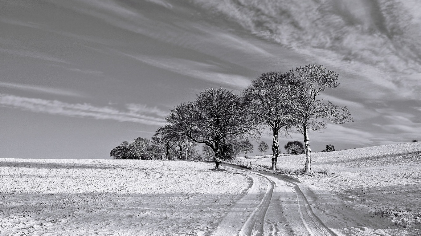 Falling Snow Wallpaper Download 1366x768 Black And White Winter Desktop Pc And Mac Wallpaper