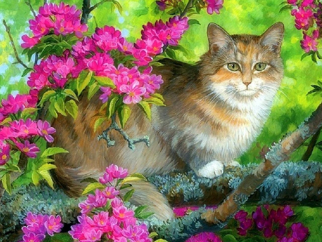 Cute Kitty Wallpapers Download 1280x720 Cute Kitty Boughs Pink Flowers Vimeo Cover Image