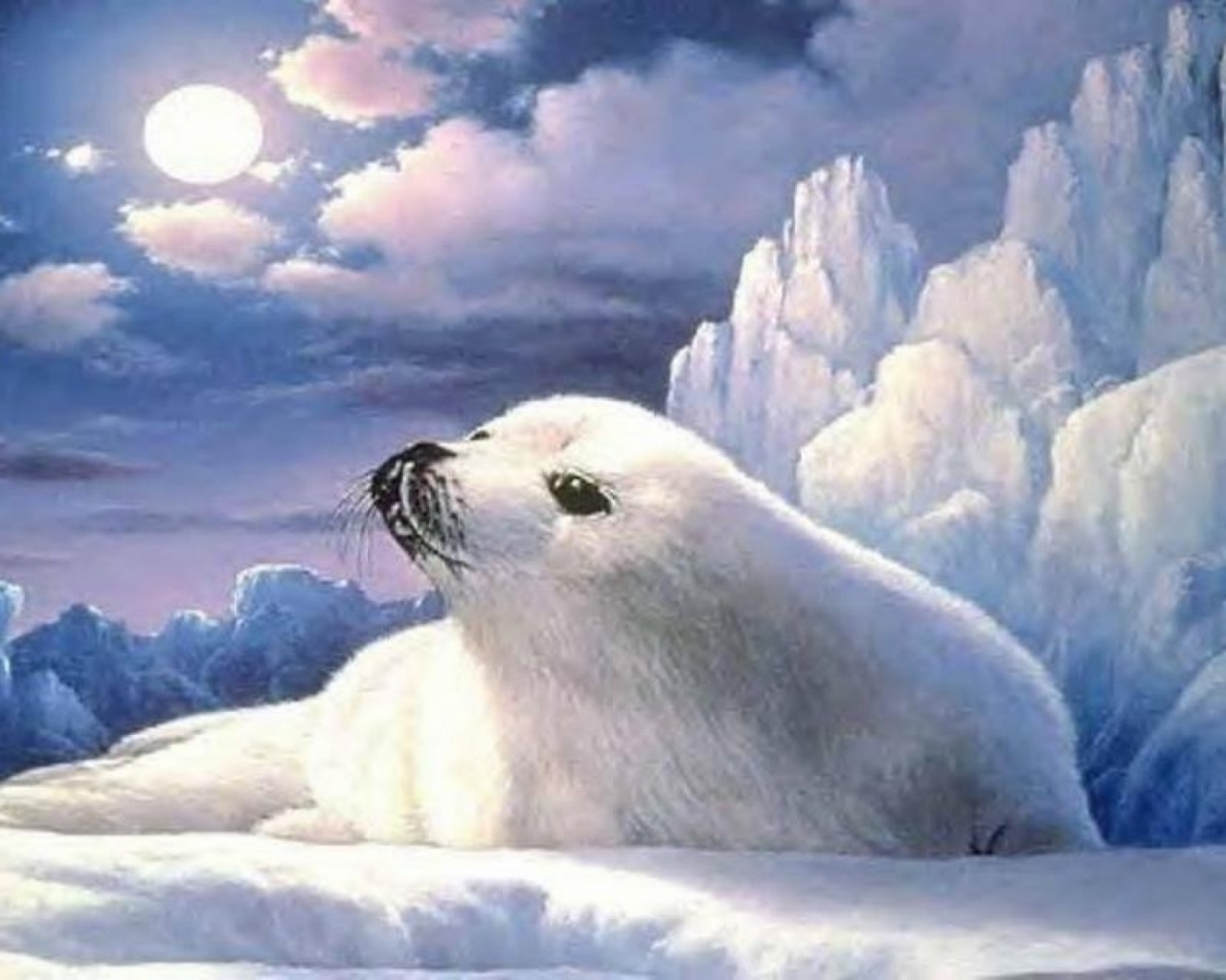 Cute Pc Wallpaper 1280x1024 Cute Lonely Seal Ice Berg Moon Desktop Pc And
