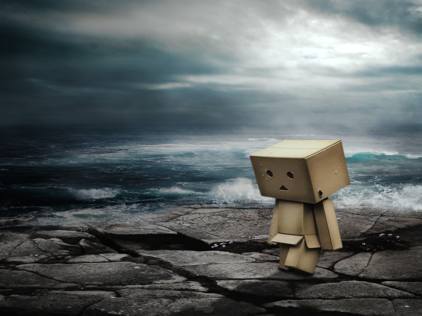 I Am Alone Wallpapers 3d Danbo Wallpapers Danbo Stock Photos