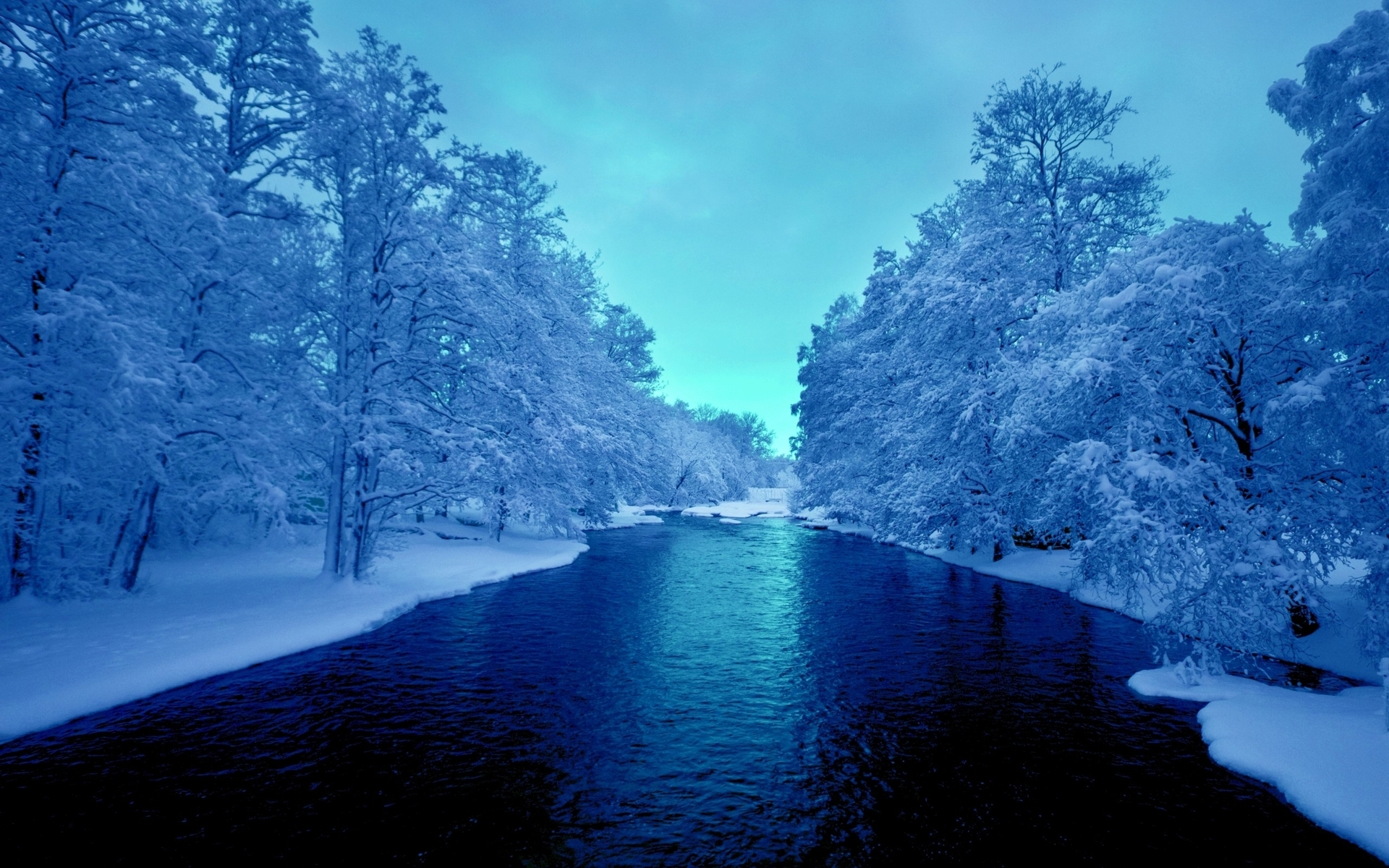 Cool Neon Cars Wallpapers Deep Blue River White Trees Wallpapers Deep Blue River