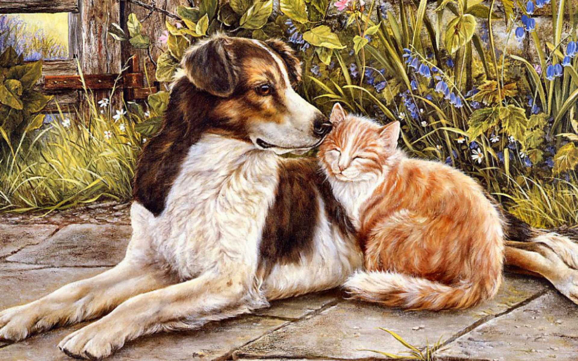 Sweet Wallpapers For Iphone Dog Amp Cat Sweet Friendship Wallpapers Dog Amp Cat Sweet