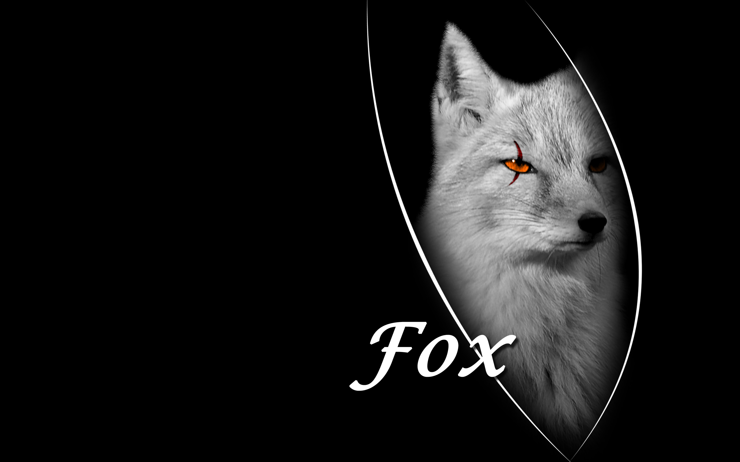 Cool Animated Pubg Wallpapers Fox Wallpapers Fox Stock Photos