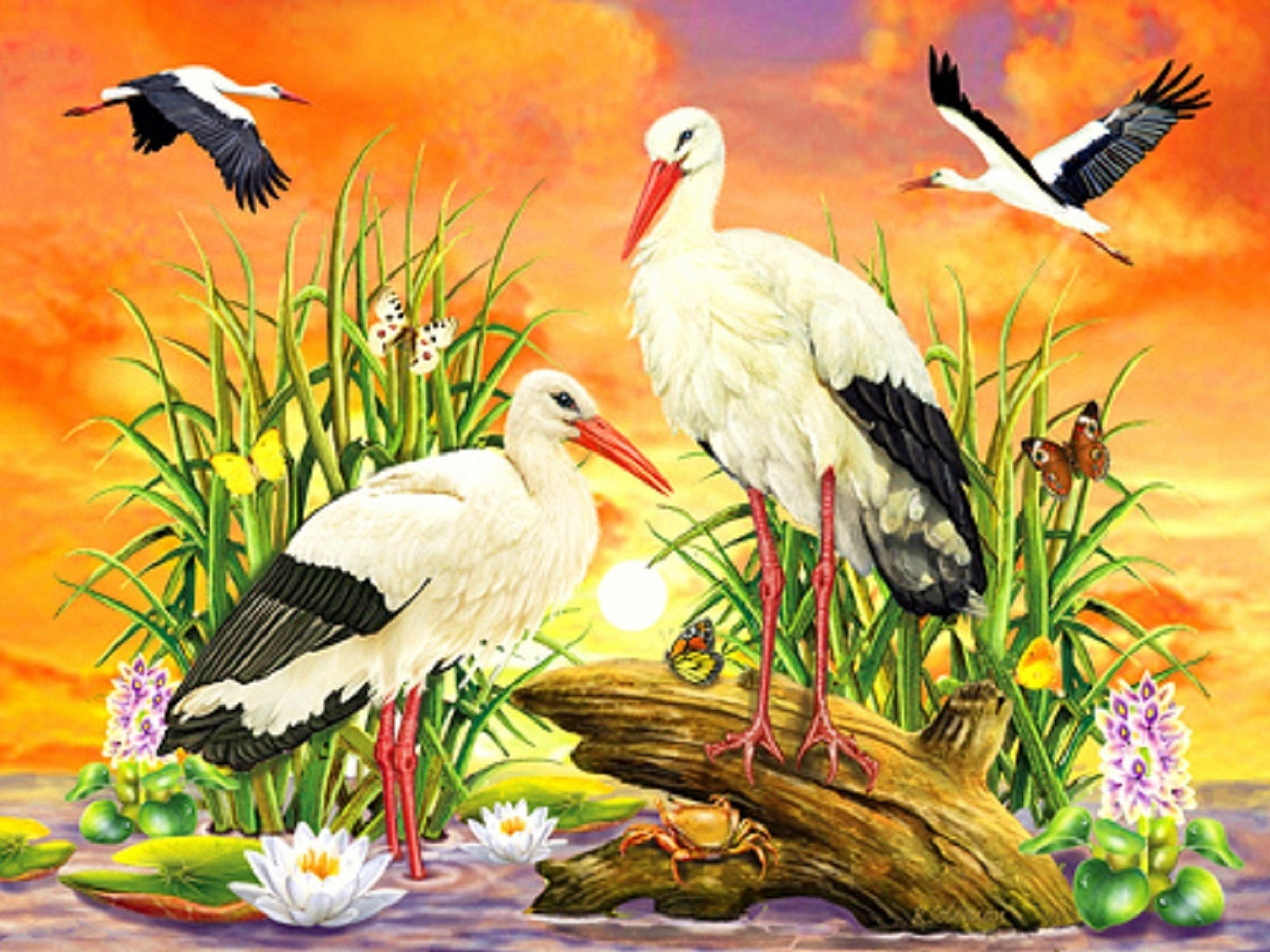 Cute Animated Wallpapers For Mobile Gif Jungle Animals Seventeen Wallpapers Jungle Animals