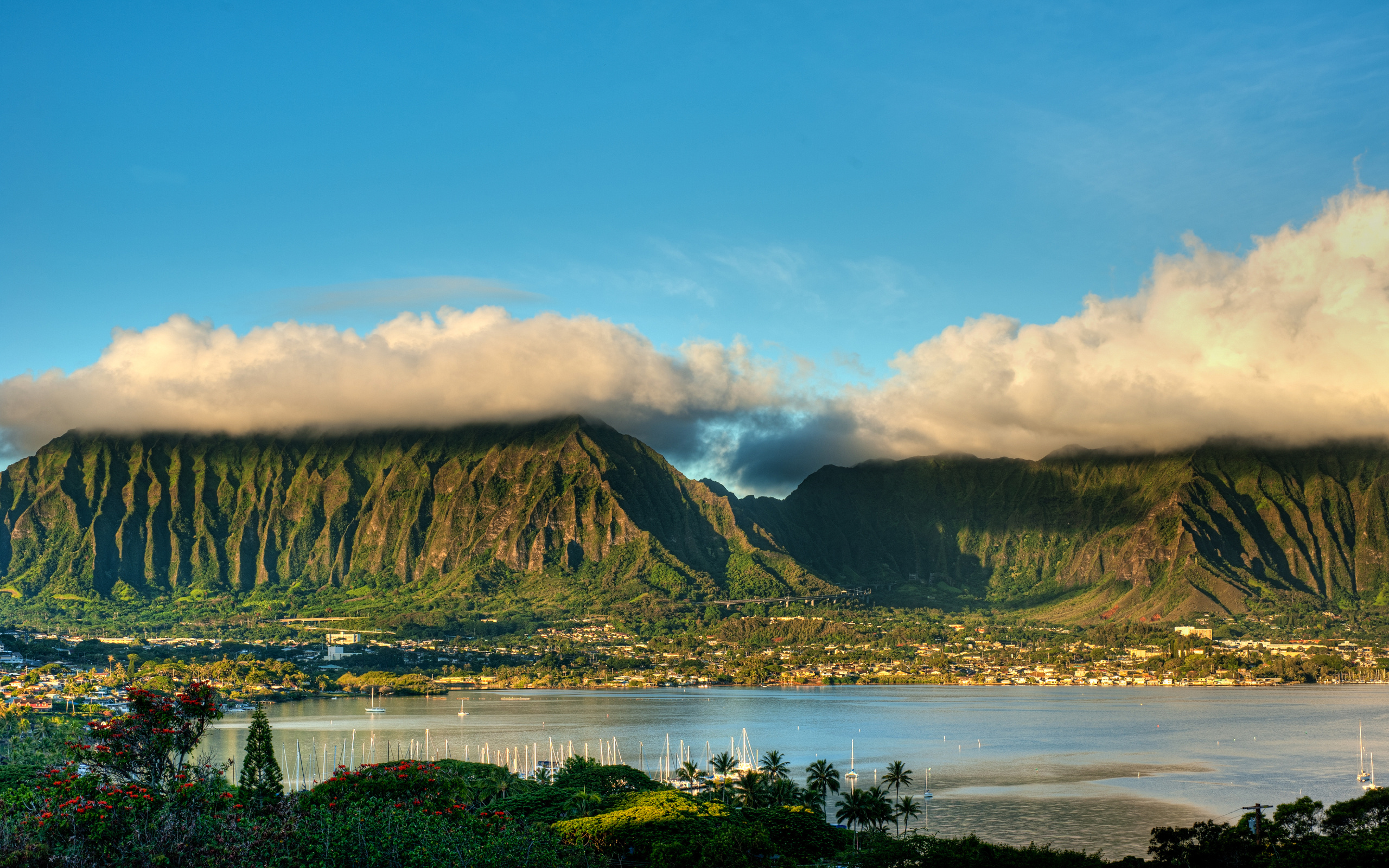 3d Wallpaper For Nexus 5 Koolau And H3 Wallpapers Koolau And H3 Stock Photos