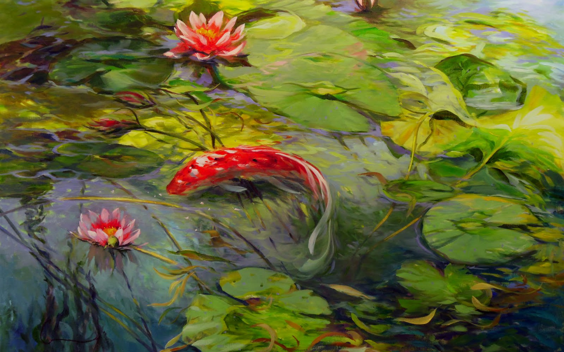 Animated Fish Wallpaper Hd Lovely Koi Lily Pond Wallpapers Lovely Koi Lily Pond
