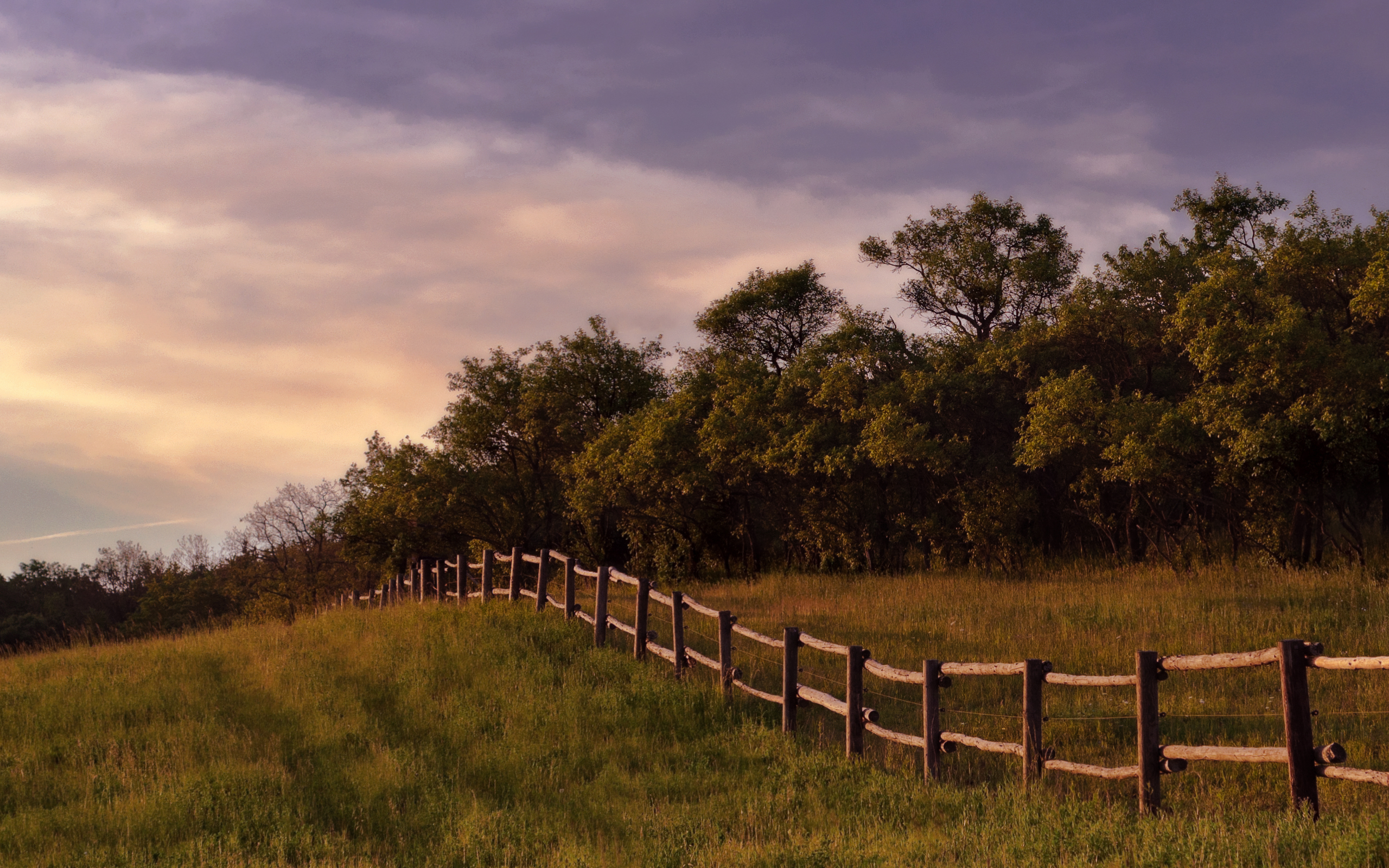 Animated Girly Wallpapers Meadow Trees Fence Dusky Sky Wallpapers Meadow Trees