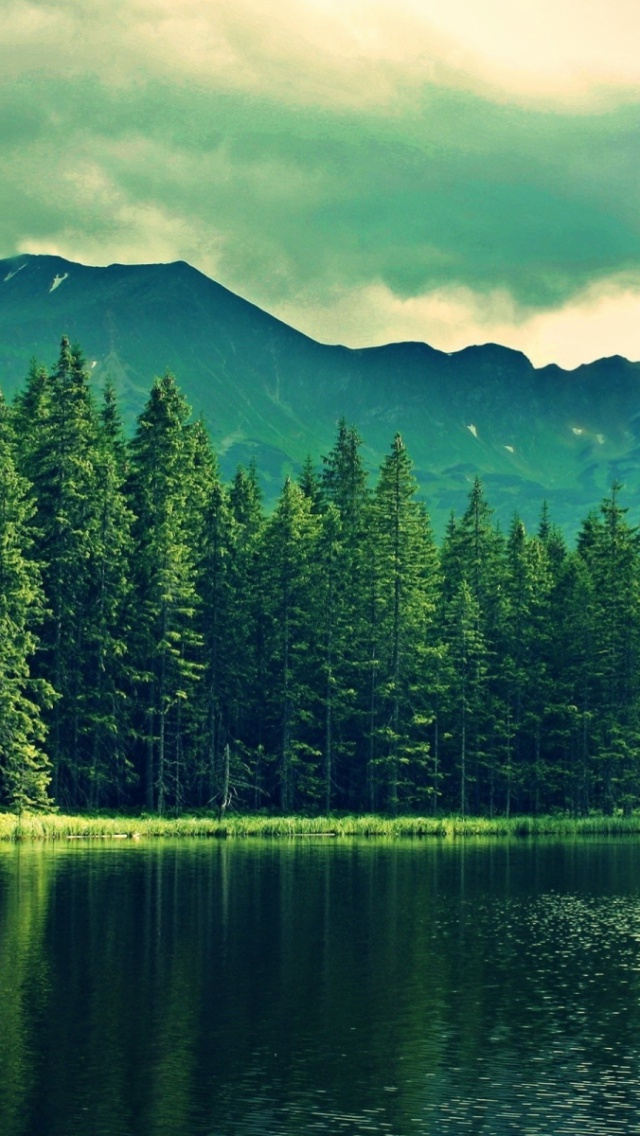 Green Wallpaper Iphone X 640x1136 Mountain Green Forest Deep Sea Iphone 5 Wallpaper