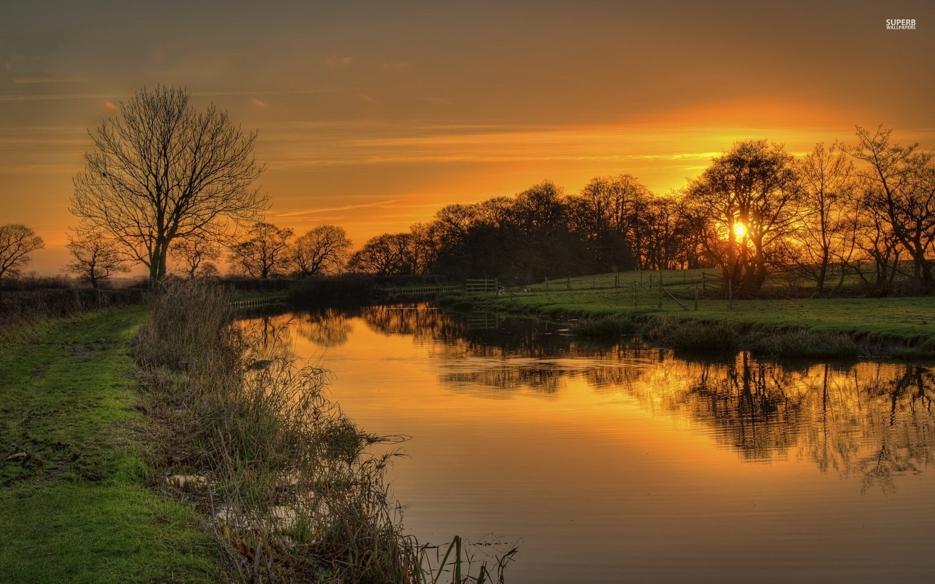 Animated Wallpaper For Tablet Orange Sunset Pond Trees Grass Wallpapers Orange Sunset