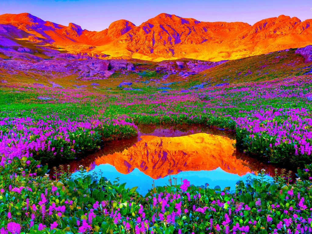 Google Desktop Wallpaper Hd 920x520 Red Mountains Amp Lilac Flowers Google Cover Photo