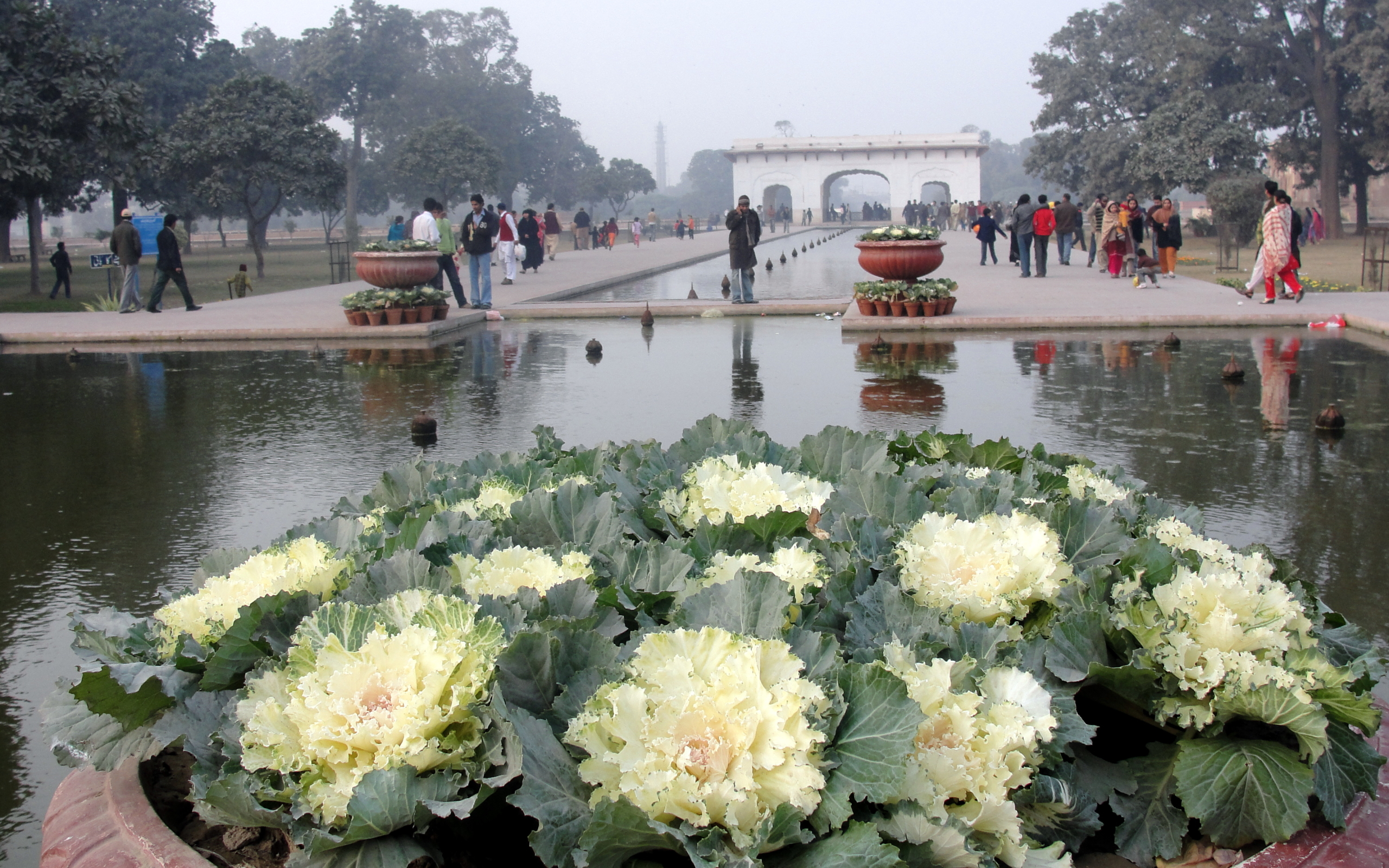 1366x768 Wallpapers Hd Cars Shalimar Gardens Wallpapers Shalimar Gardens Stock Photos