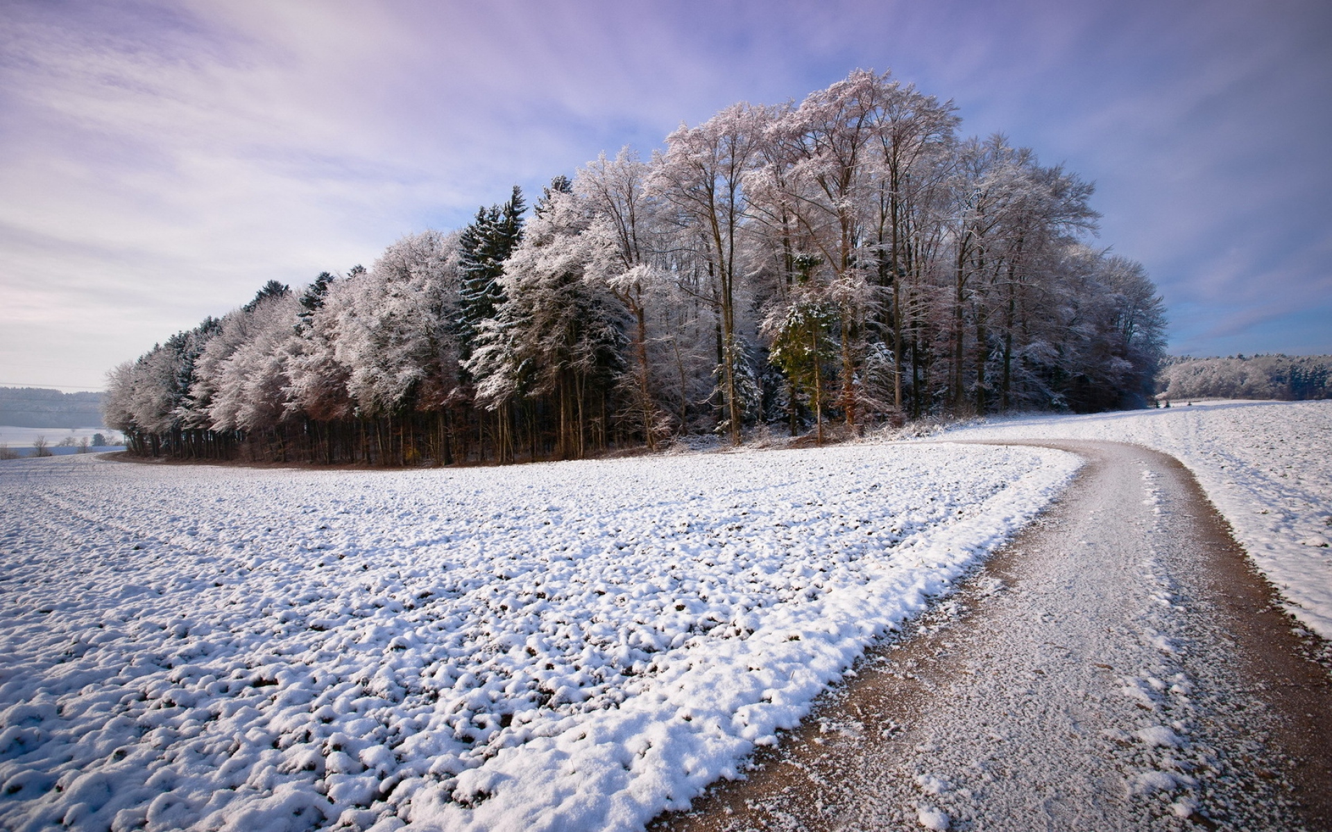 Free Fall Wallpaper With Animals Snowy Fields Path Amp Forest Wallpapers Snowy Fields Path