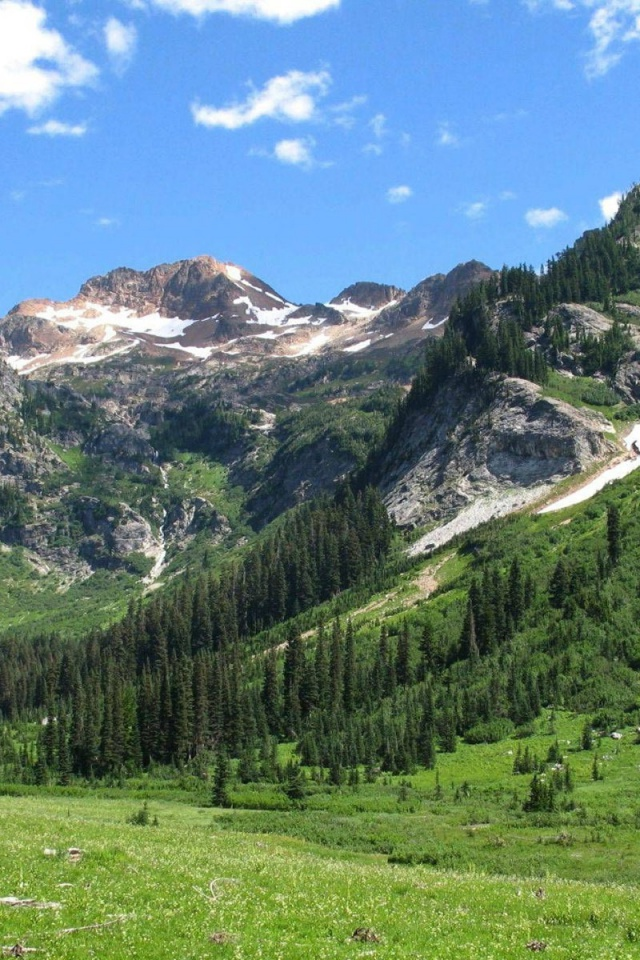 Iphone X Stock Wallpaper Download 640x960 Spider Meadow Washington State Iphone 4 Wallpaper