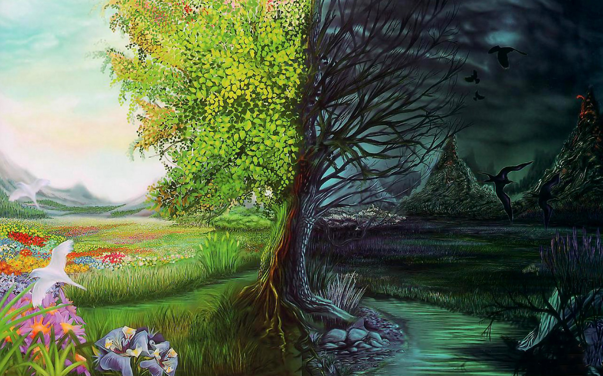 3d Animated Wallpapers For Mobile Free Download The Two Sides Of Nature Wallpapers The Two Sides Of