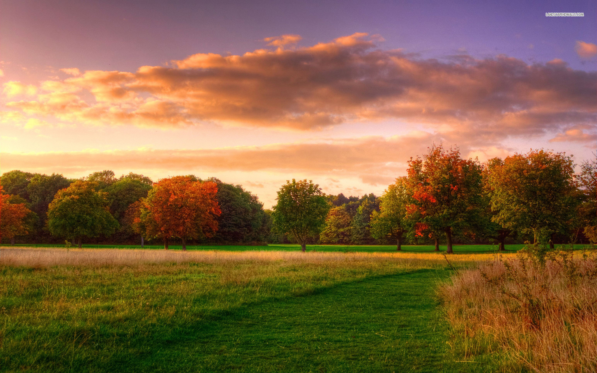Fall Harvest Desktop Wallpaper Trees Grass Field Cloud Sunset Wallpapers Trees Grass
