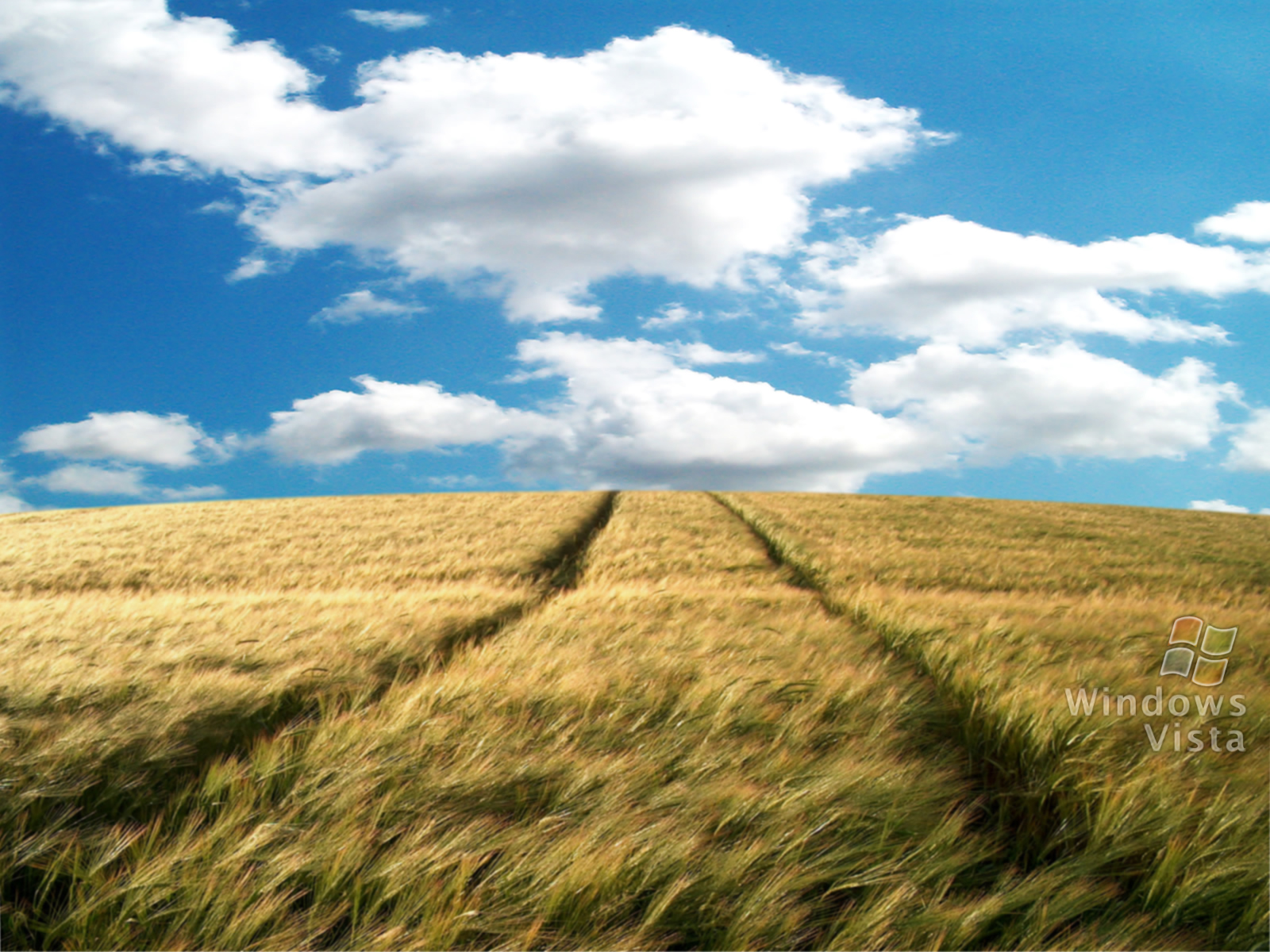 Linux Animated Wallpaper Vista Hayfield Wallpapers Vista Hayfield Stock Photos