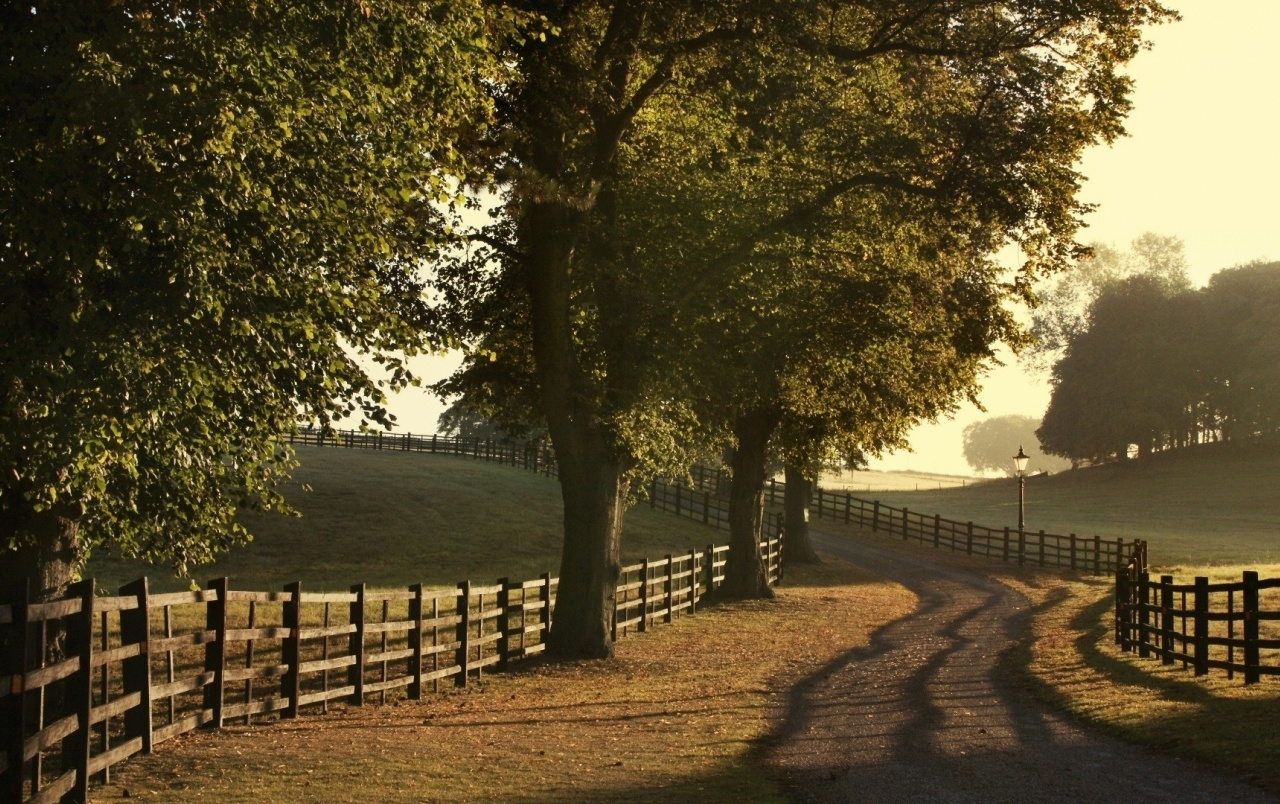 Top Hd 3d Wallpaper For Mobile Trees Fences Field Path Rural Wallpapers Trees Fences