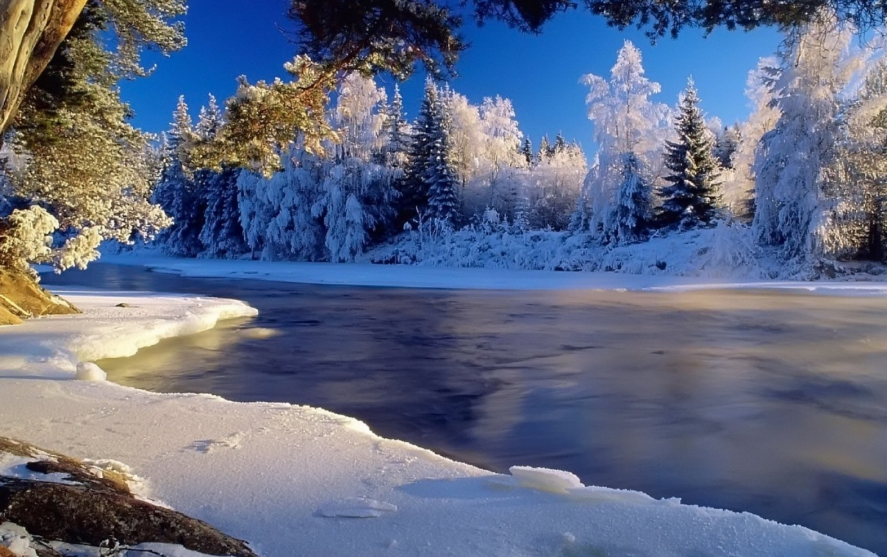 Best 3d Wallpapers For Iphone 7 Snow Trees Amp Frozen River Wallpapers Snow Trees Amp Frozen