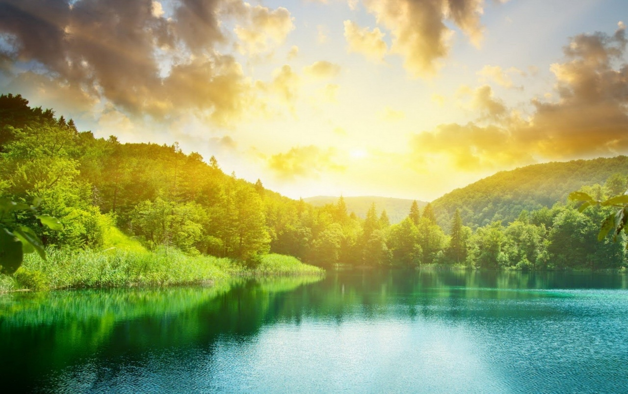 Amazing 3d Wallpapers For Mobile Clouds Sun Forest Amp Aqua Lake Wallpapers Clouds Sun