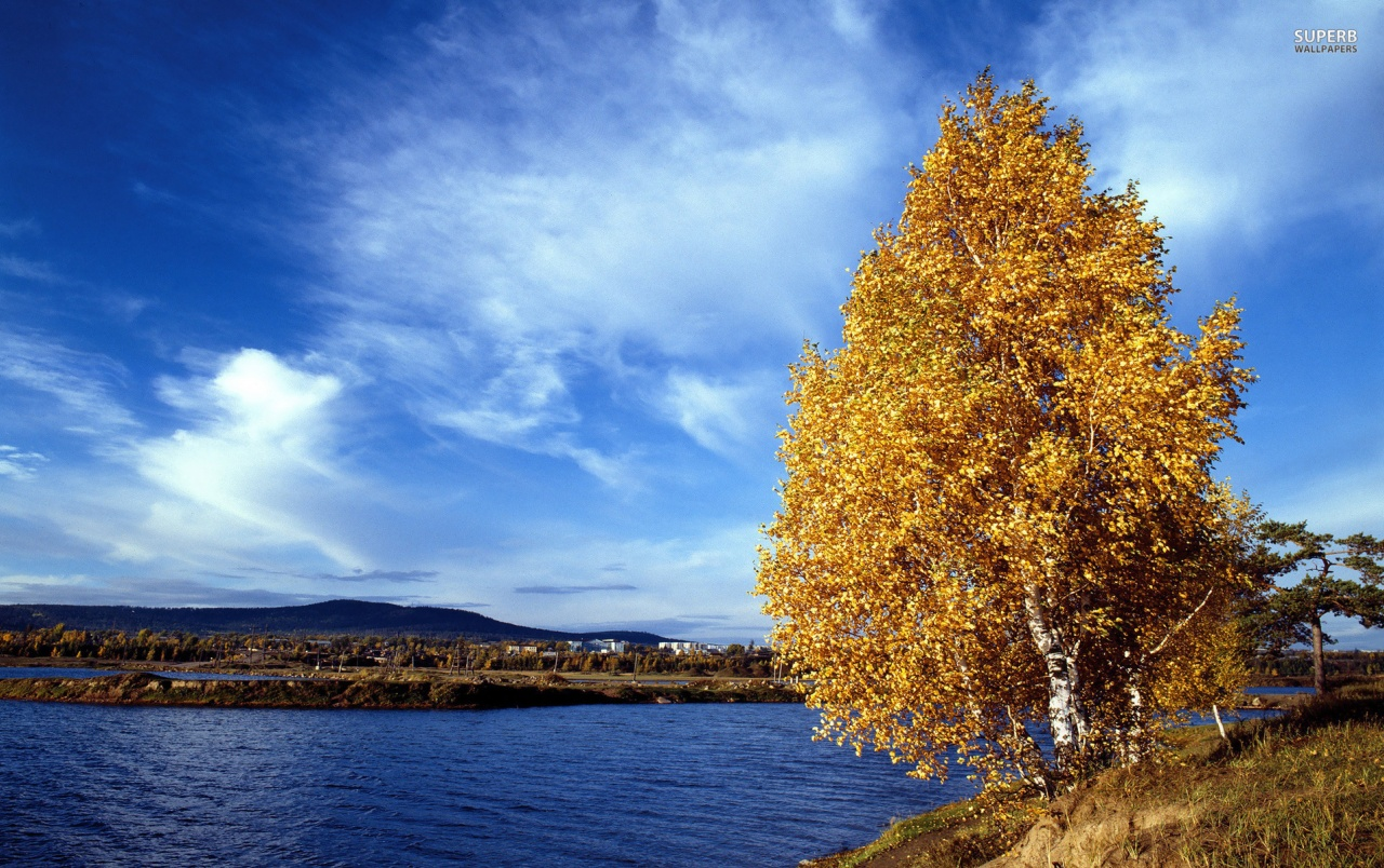 Fall Scenes For Ipad Wallpaper Lakeside Autumn Tree Wallpapers Lakeside Autumn Tree