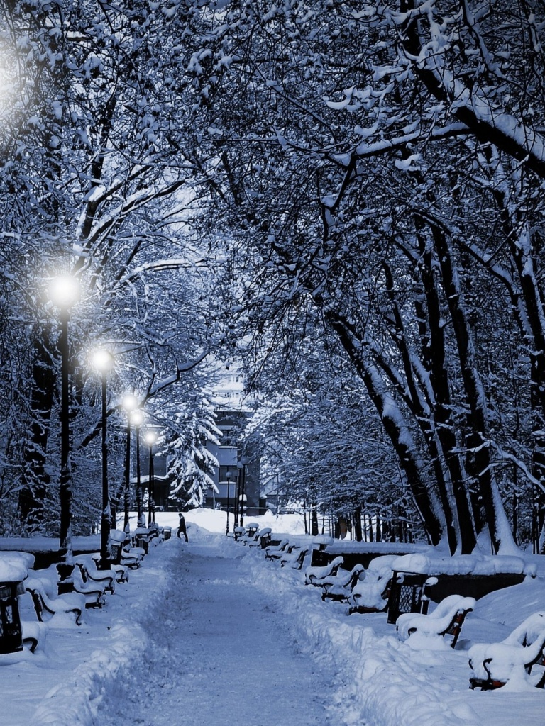 Falling Snow Live Wallpaper For Pc 768x1024 Winter Trees Lamps Amp Way Ipad Wallpaper