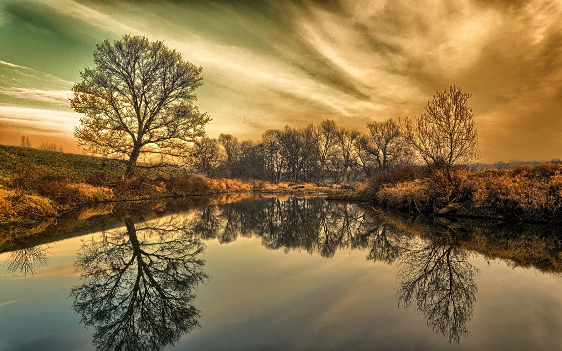 Amazing Iphone X Wallpapers Wonderful Trees Reflection Wallpapers Wonderful Trees