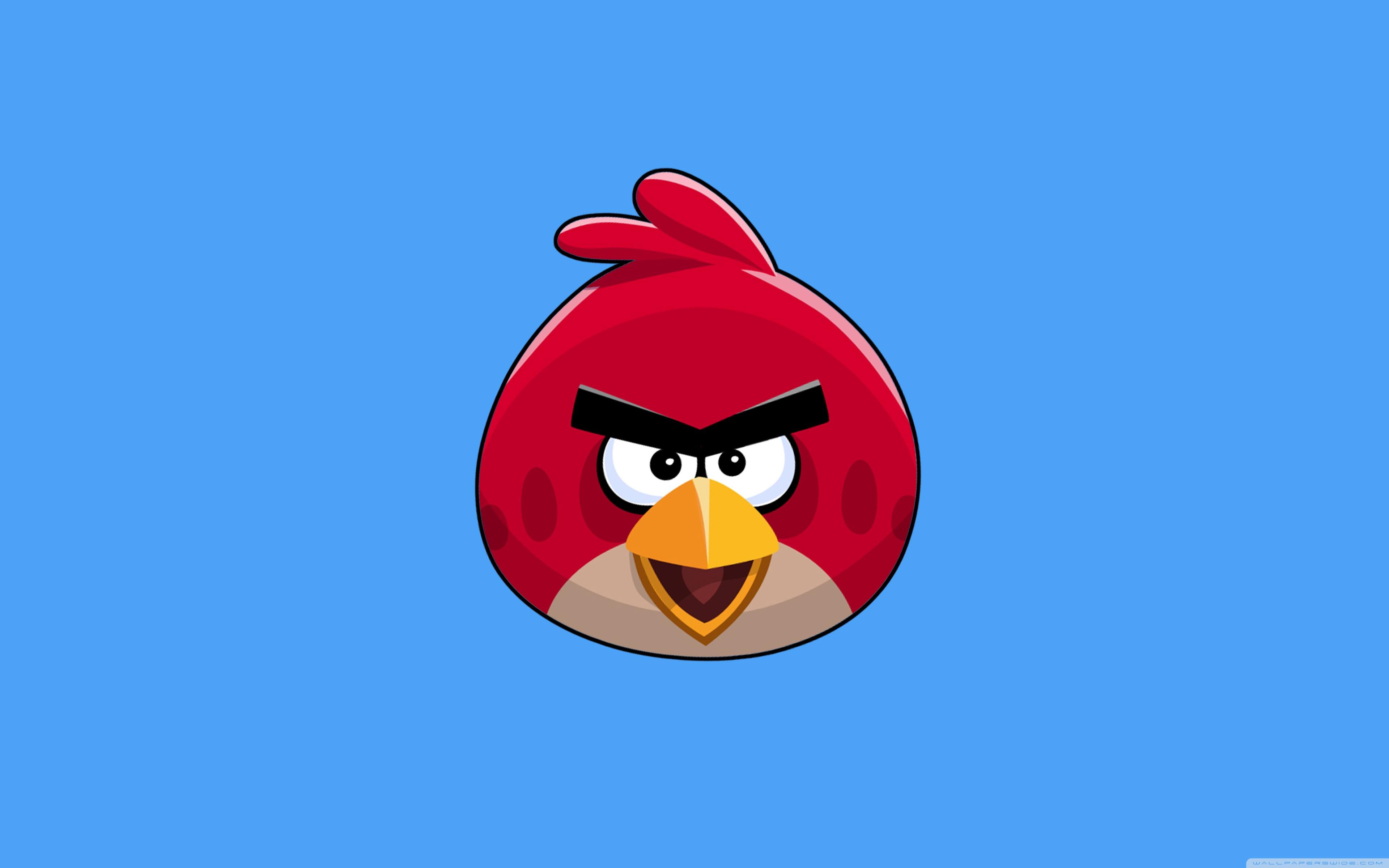 Angry Bird Space Wallpaper 3d Angry Bird 4k Hd Desktop Wallpaper For 4k Ultra Hd Tv