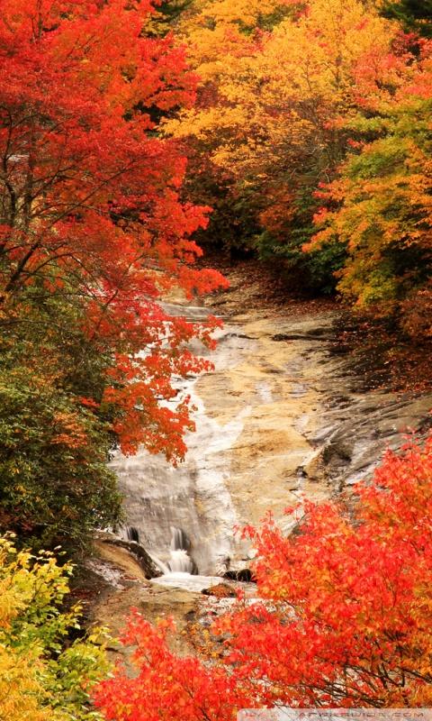 Smoky Mountains Fall Wallpaper Blue Ridge Parkway North Carolina Autumn 4k Hd Desktop