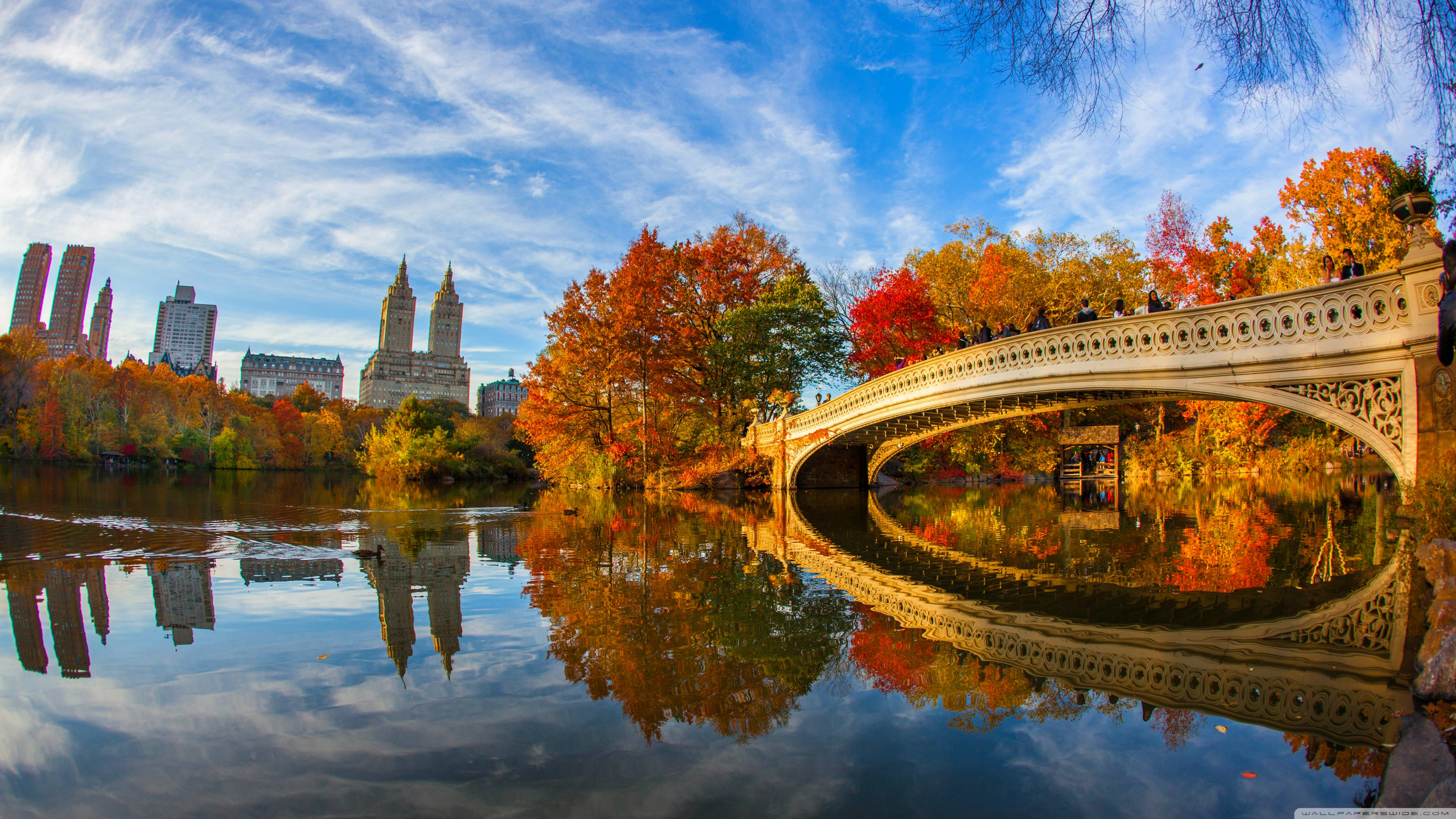 Fall Floiage Wallpaper Fall Foliage In Central Park New York City 4k Hd Desktop