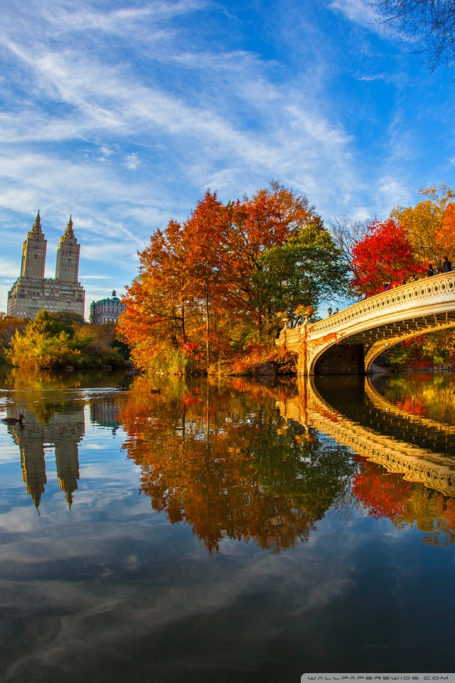 Wallpaper Hd 480x800 3d Fall Foliage In Central Park New York City 4k Hd Desktop