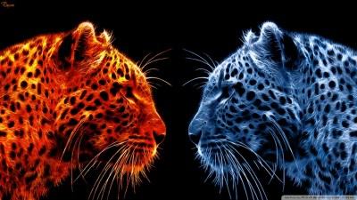 Fire Leopard vs Ice Leopard 4K HD Desktop Wallpaper for 4K Ultra HD TV • Wide & Ultra Widescreen ...