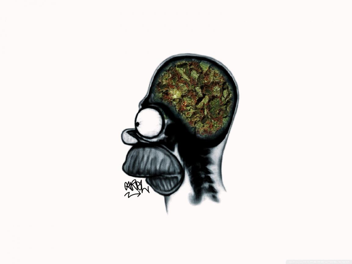 Stewie Hd Wallpaper Homer Weed Brain 4k Hd Desktop Wallpaper For