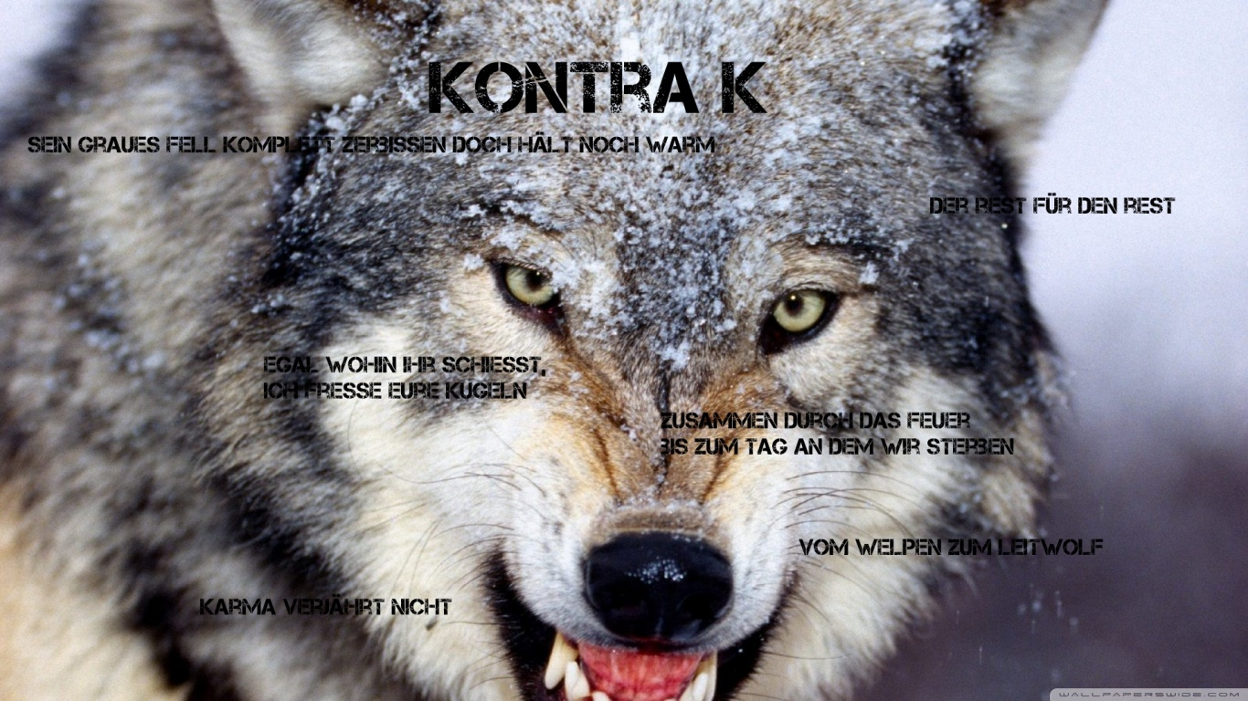 Quotes Wallpaper Hd 1366x768 Kontra K Wolf W 246 Lfe Lyric Capture It 4k Hd Desktop