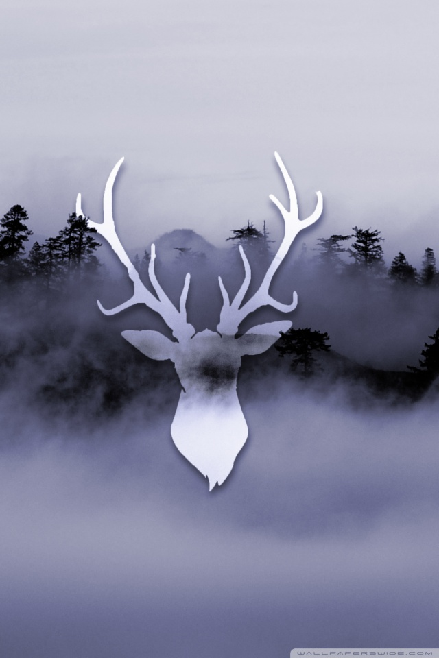 Iphone Wallpaper Reddit Misty Deer 4k Hd Desktop Wallpaper For 4k Ultra Hd Tv