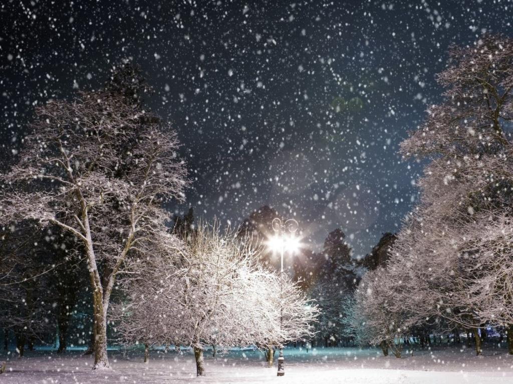 Snow Falling Wallpaper For Ipad Snow At Night 4k Hd Desktop Wallpaper For 4k Ultra Hd Tv