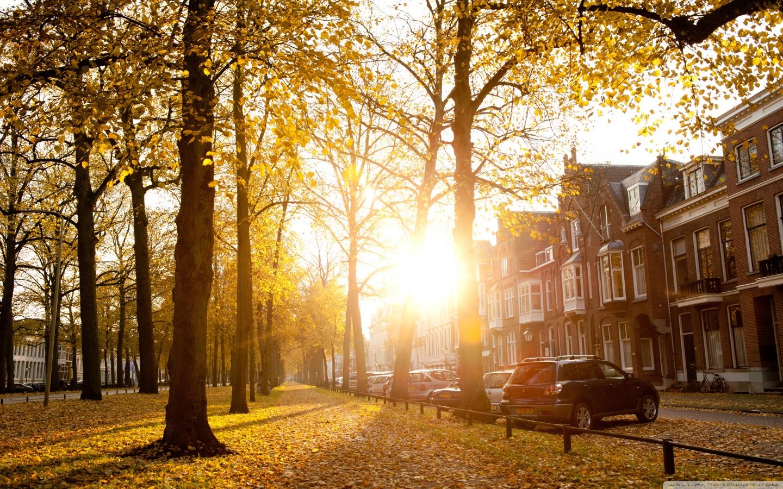 Netherlands Fall Wallpaper Sunny Autumn Afternoon In Utrecht 4k Hd Desktop Wallpaper