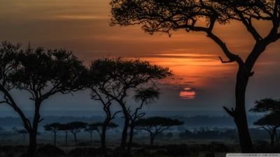 Sunrise in Masai Mara, Kenya, Africa 4K HD Desktop Wallpaper for 4K Ultra HD TV • Wide & Ultra ...