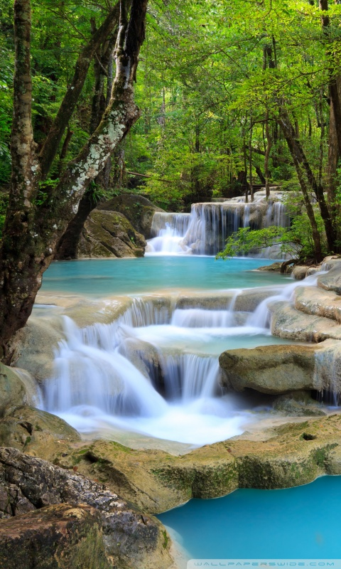 320x480 Animated Wallpapers Tropical Waterfall 4k Hd Desktop Wallpaper For 4k Ultra Hd