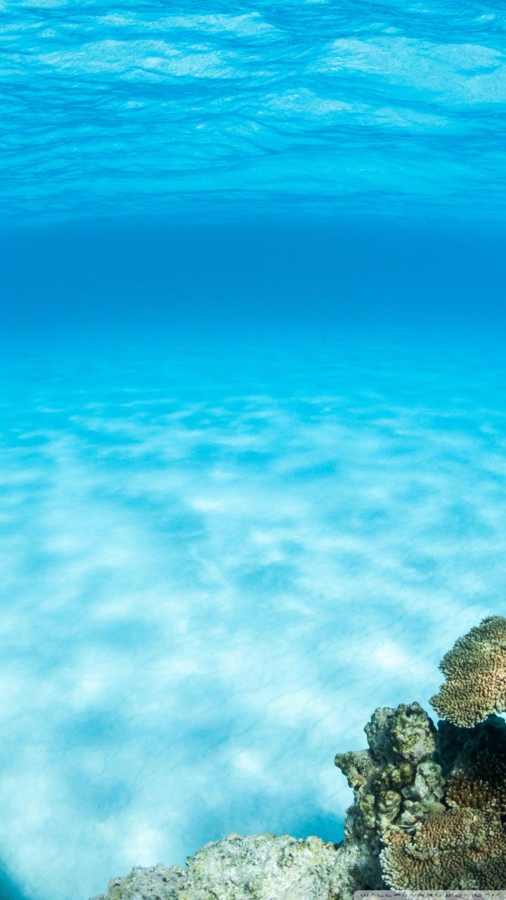 Pretty Fall Iphone Wallpapers Underwater Summer 4k Hd Desktop Wallpaper For 4k Ultra Hd