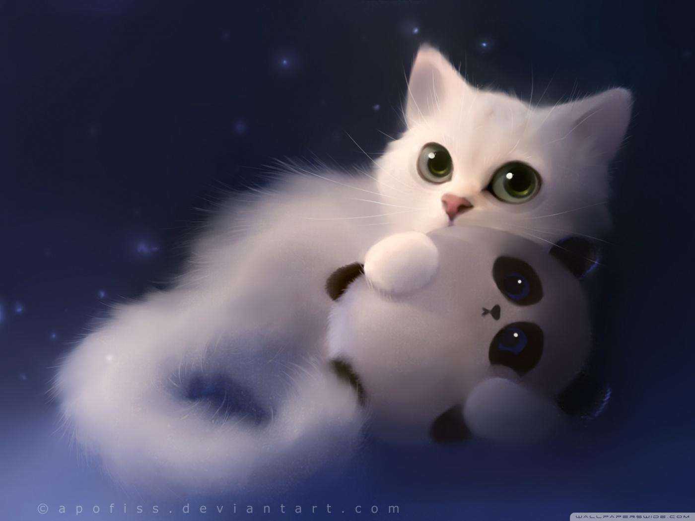 Cute Kitten Wallpaper For Ipad White Night 4k Hd Desktop Wallpaper For 4k Ultra Hd Tv