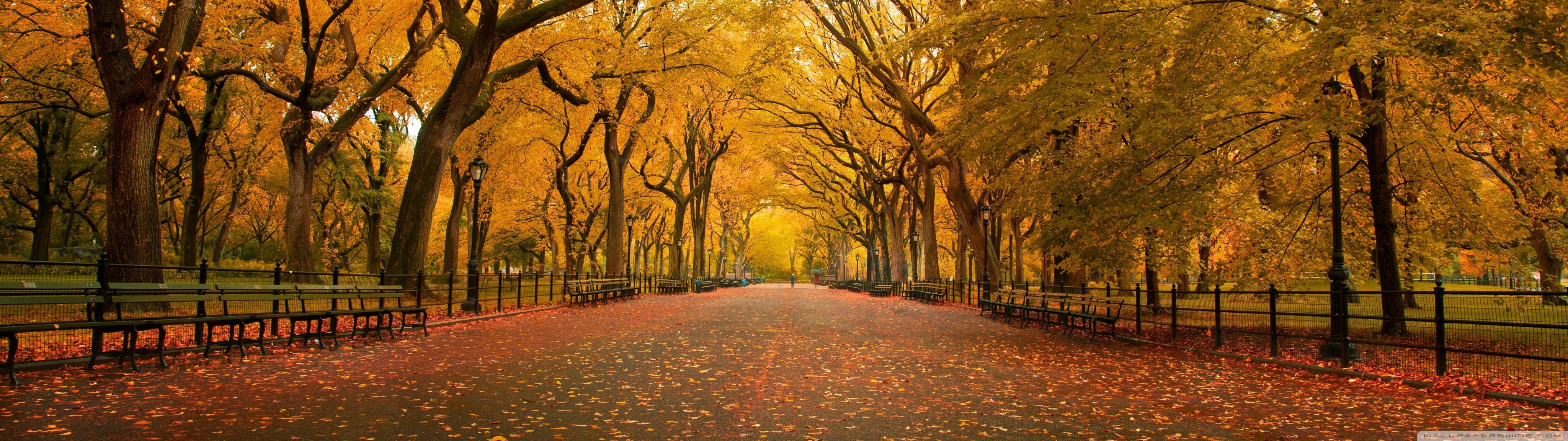 Fall Wallpaper For Android Tablet Wide Alley Hd Desktop Wallpaper High Definition