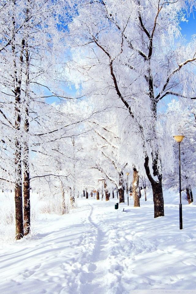 Smartphone Wallpapers Hd Free Winter Wonderland 4k Hd Desktop Wallpaper For 4k Ultra Hd