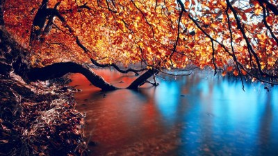 HD Autumn Wallpapers ·①