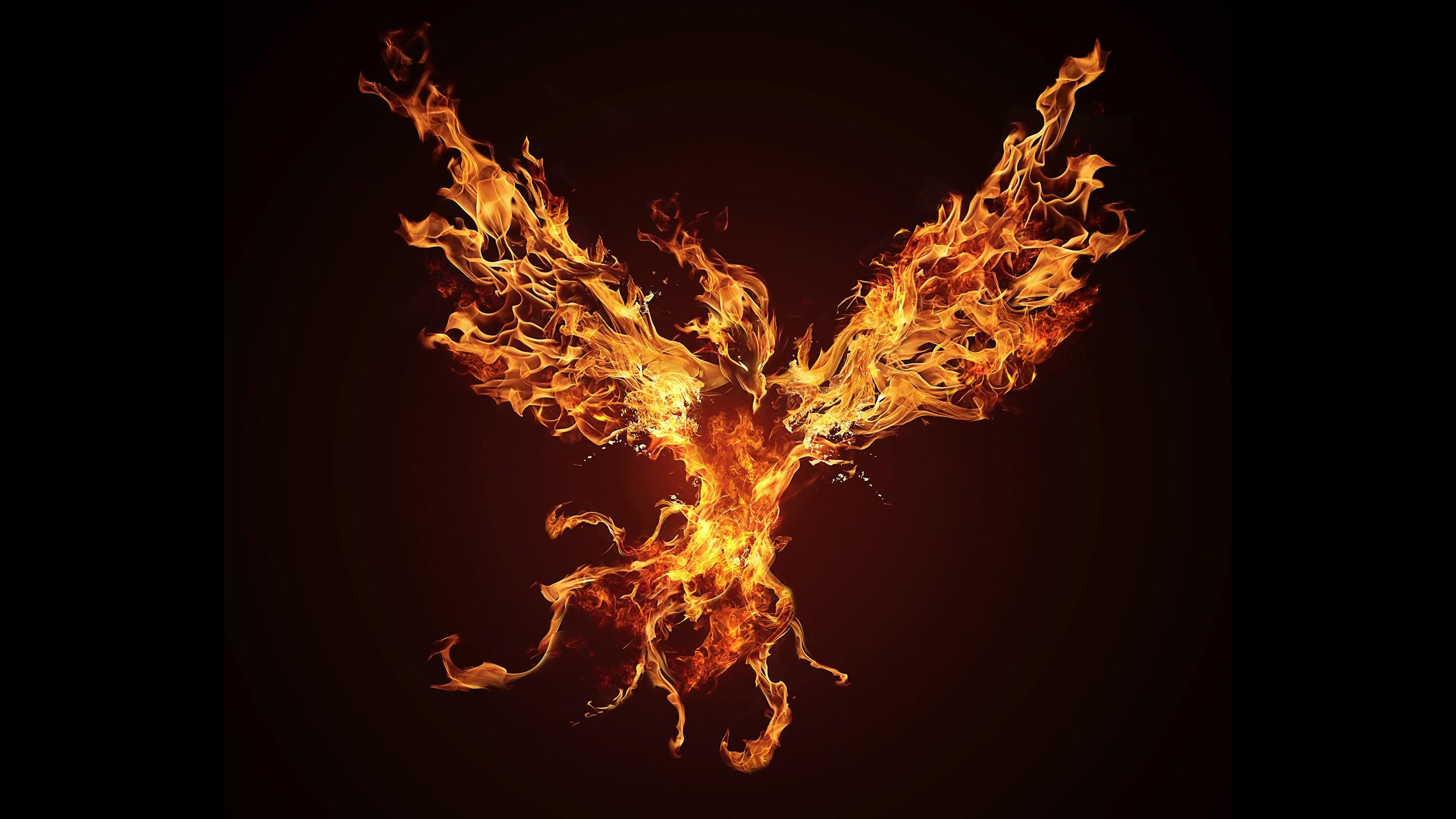 Fall Out Boy Wallpaper Ipad Phoenix Wallpaper 183 ① Download Free Beautiful High