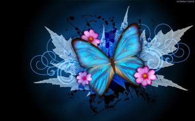 Cool Butterfly Backgrounds ·① WallpaperTag